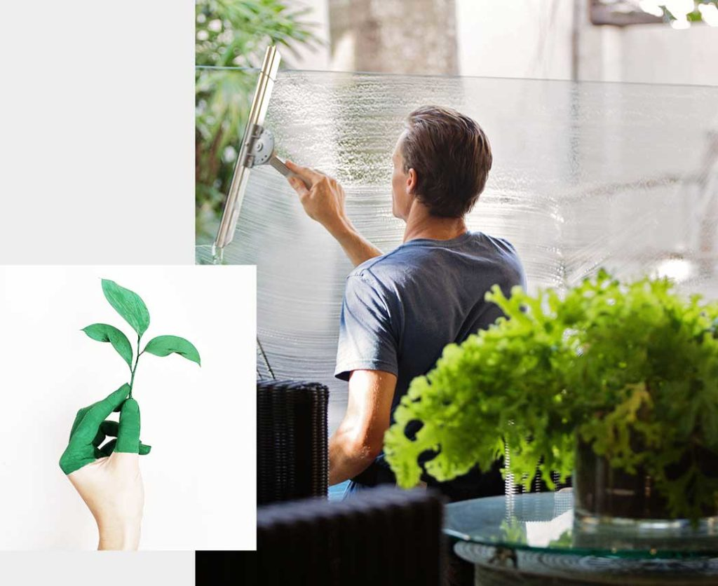 washing window with squeegee, plants in foreground