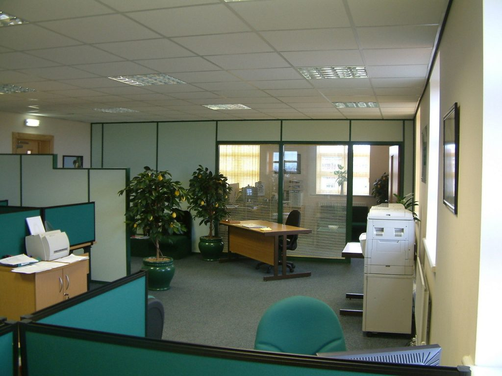 Office With Small Trees and Plants Spread Across the Room